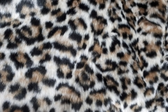 Leopard J